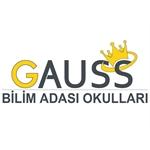 GAUSS ÖZEL BİLİM ADASI OKULU