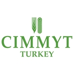 CIMMYT International Maize and Wheat Improvement Center