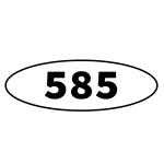 585 MÜCEVHERAT ANONİM ŞİRKETİ